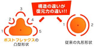 構造の違いが復元力の違い!!