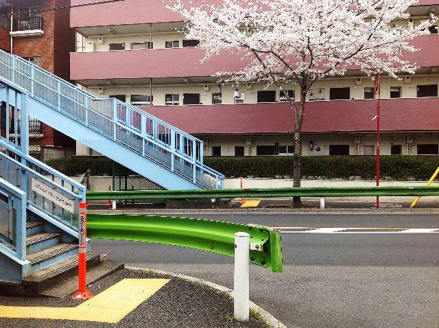 東京都中野区 スクールゾーン